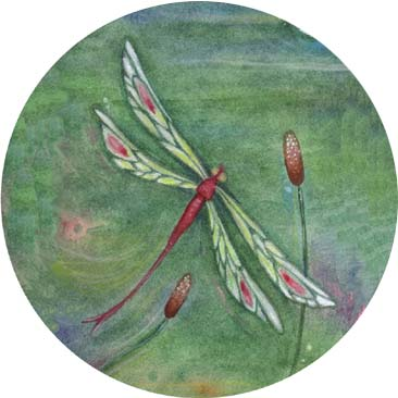 TRANQUILLITY~original dragonfly painting~