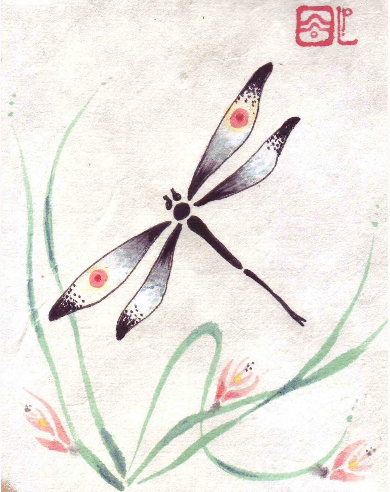 Dragonflies And More Liza Paizis