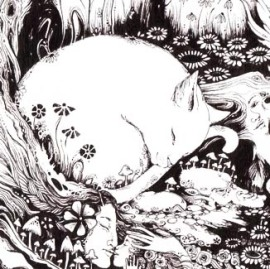 fairy-cat1
