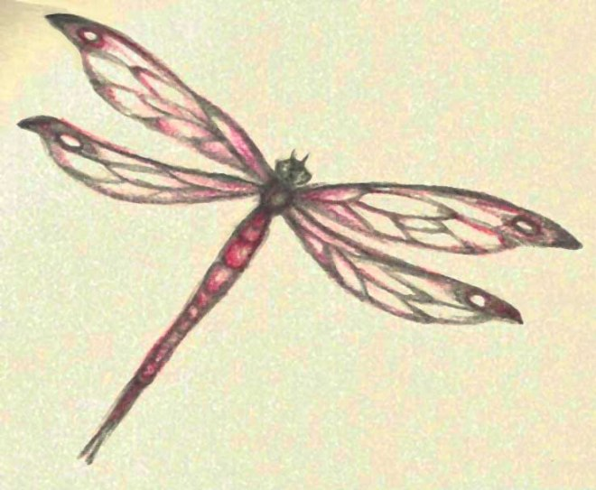 red dragonfly tattoo design
